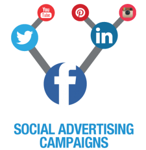 social media platform advertising