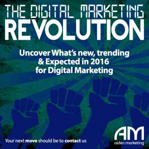 aiden marketing DMR10