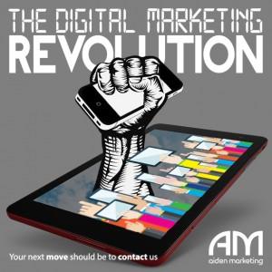 aiden marketing DMR11