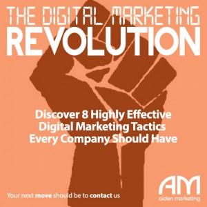 aiden marketing DMR12