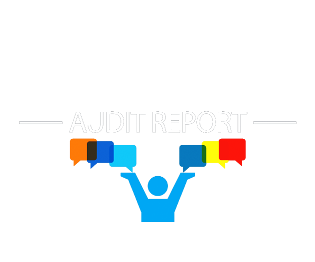 social media marketing audit report