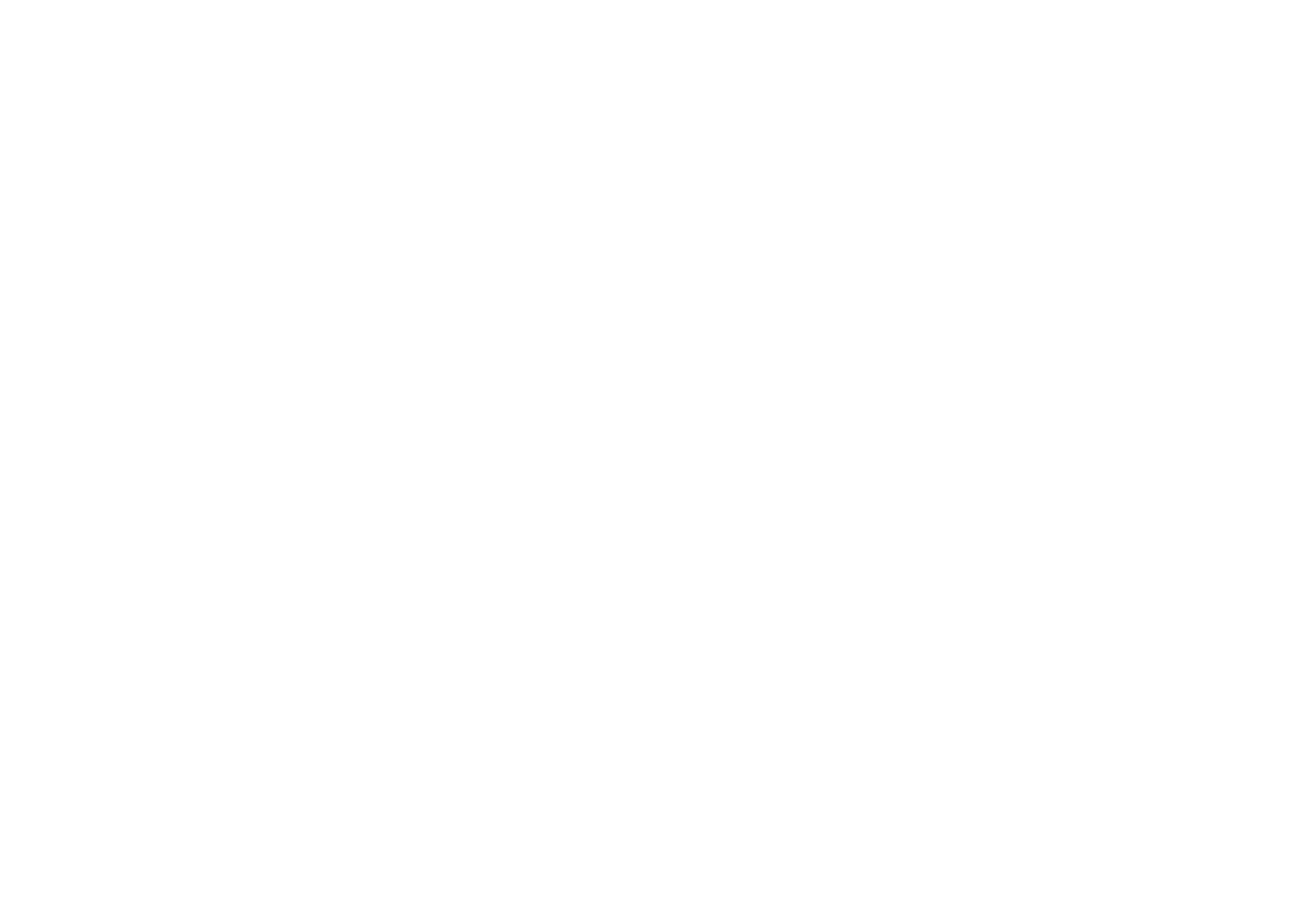 Digital Marketing and Consulting Agency
